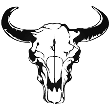 Longhorn Bull Skull 1 Vinyl Decal Sticker