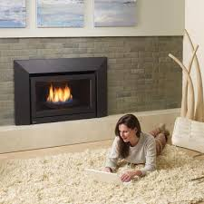 gas fireplaces inserts ventless logs