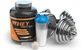 best whey protein for weight loss of