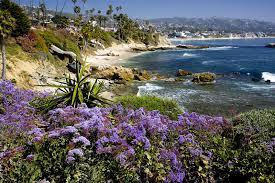 wallpaper orange county california
