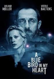 A Bluebird in My Heart (2018) - DVD PLANET STORE