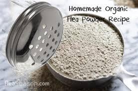 3 ing homemade organic flea