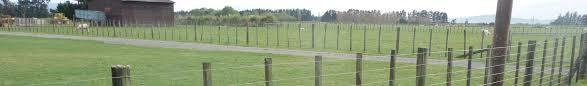 Https Cdn Flightdec Userfirst Co Nz Uploads Sites Pauatahanui Files Pdfs A Z 20information Types Of Fencing Pdf