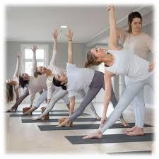 the best 200 hour yoga teacher
