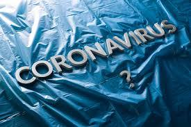Resultado de imagem para sobre o coronavírus opiniao