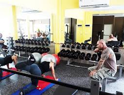 picture of dolphin fitness ko chang