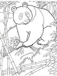 Kids N Fun Kleurplaat Panda Panda