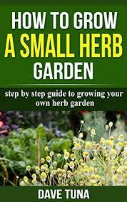 grow a small herb garden