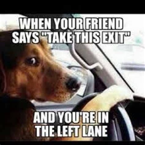 """Image result for quotes about driving"""""""