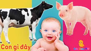 Con Gì Đây 🐄 Dạy Bé Học Con Vật Tiếng Kêu, Hình Ảnh Con Bò, Lợn, Chó, Mèo,  Vịt, Gà, Báo | Gà Con TV - Nhạc thiếu nhi mới nhất. - #