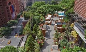 rooftop garden nyc lit and the city