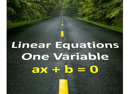 cbse class 8 linear equations in one