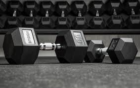 rogue dumbbells weight