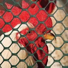 Poultry Fence Boundaries And Fencing Tenax