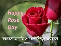 bangla rose day sms happy status kobita bengali shayari message wishes