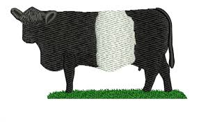 belted galloway cow farm clothing and
