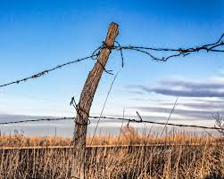 Fence Post And Barbed Wire Photograph By Bill Kesler