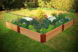 Vegetable Garden Fence Ideas You Can Find Out More Details At The Link Of The Image Fenced Vegetable Garden Backyard Vegetable Gardens Small Garden Fence