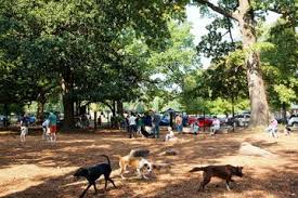 Off Leash Dog Parks In Bartlett Tn Bringfido