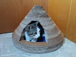 une maison en carton pour votre chat