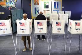 Despite coronavirus, voter turnout was ...