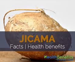 jicama facts health benefits and