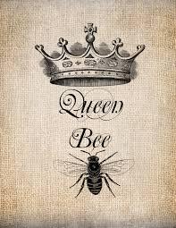 best 66 queenbee wallpaper on