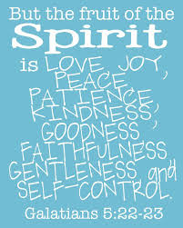 but the fruit of the spirit is love joy peace patience