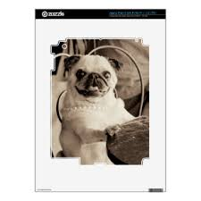 Black And White Dog Photo Computer Laptop Tablet Video Game Skins Zazzle