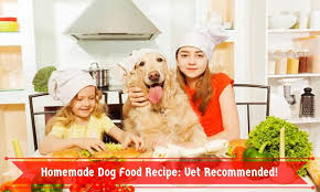 homemade dog food recipe vet remended