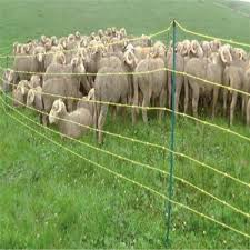 Livestock Sheep Electric Netting 50 Metre Tfm Farm Country Superstore