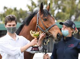 Geelong Cup 2020: Steel Prince set for ...