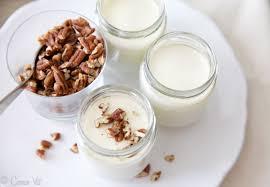 thick homemade yogurt with dairy free