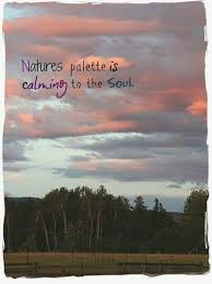 nature s palette beauty quotes nature quotes soul quotes