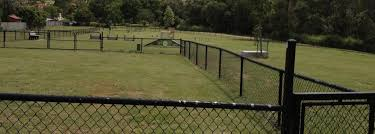 Dog Leash Free Areas And Conditions For Dog Entry Campbelltown City Council