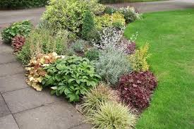 shrub border plans small garden