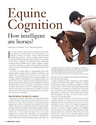 Pdf Equine Cognition How Intelligent Are Horses