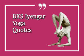 best yoga quote collection by bks iyengar catherine annis