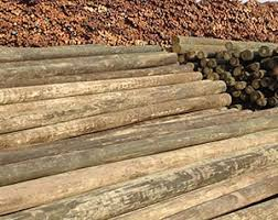 Piling Poles Posts Southern Pine Lumber Company
