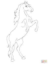Steigerend Paard Kleurplaat Gratis Kleurplaten Printen