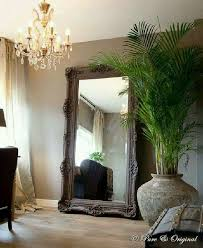 floor mirror and erfly palm corner