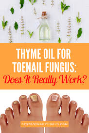 thyme oil for toenail fungus treatment