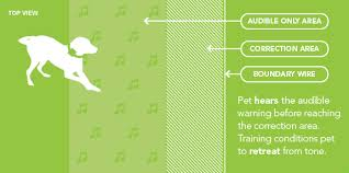 How The Dog Fence System Works Dogfence