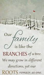 family ties quotes family quotes cousin quotes family memories