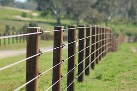 Petrie Equine Construction Creating Horse Properties Of Distinction Pasture Fencing Horse Fencing Horse Property