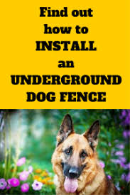 How To Install An Underground Dog Fence Dig Your Dog