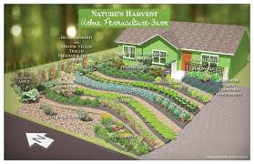 converting lawn to garden the druid s