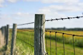 Types Of Fencing For Your Small Farm