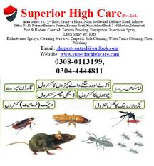 0304-4444,811 Dengue,Lizard Spray,Termite Control,Pest Control Service -  Other Services - 1014822510