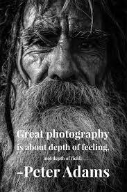 beautiful photography quotes images to use on instagram